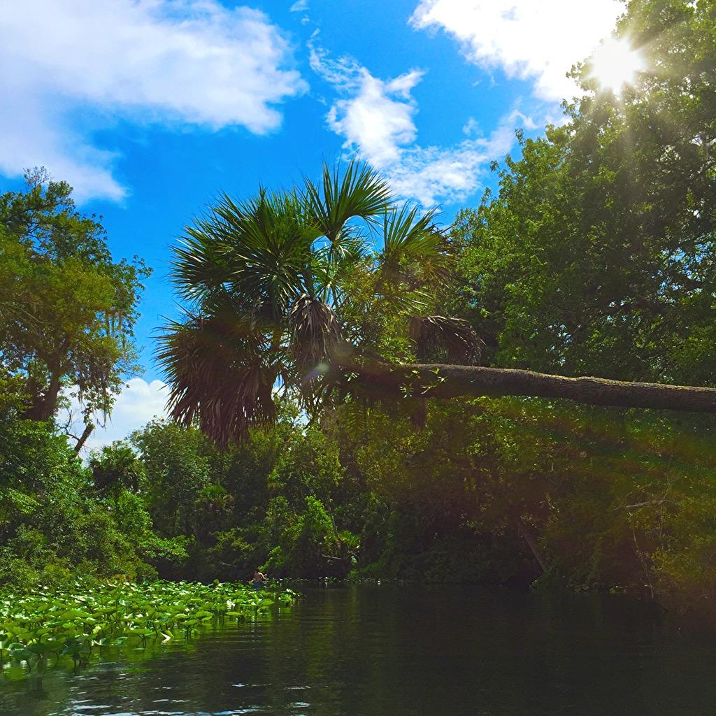 Florida Stop: Wekiva Springs