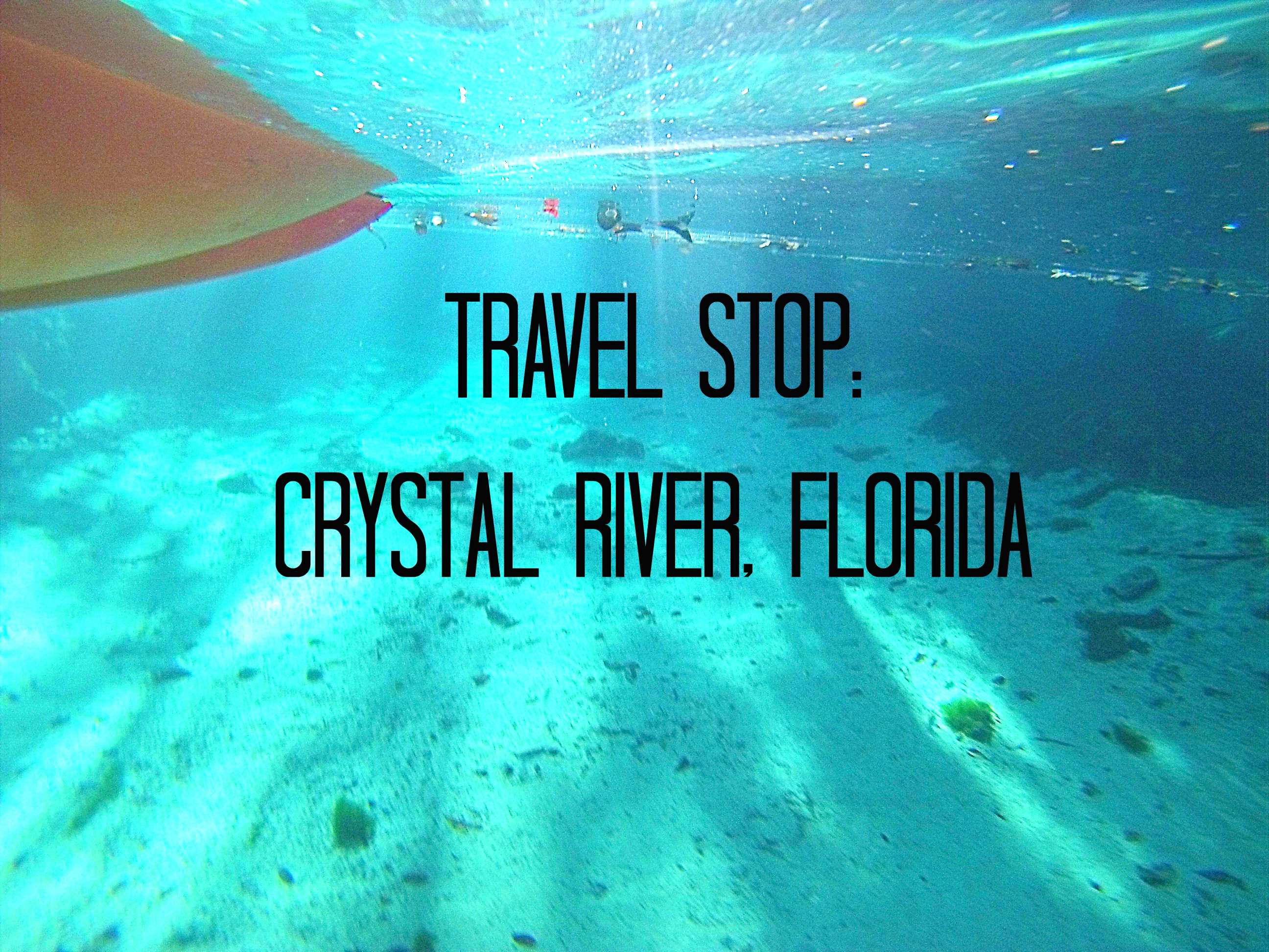 Travel Stop: Crystal River, Florida